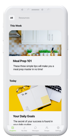 onpoint phone mockup - meal prep